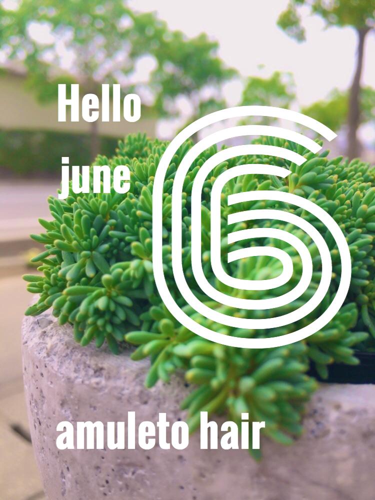 アムレット6月のお休み